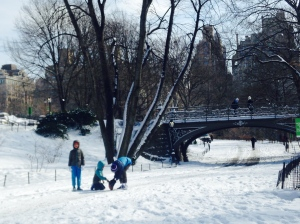 Football in Central Park
